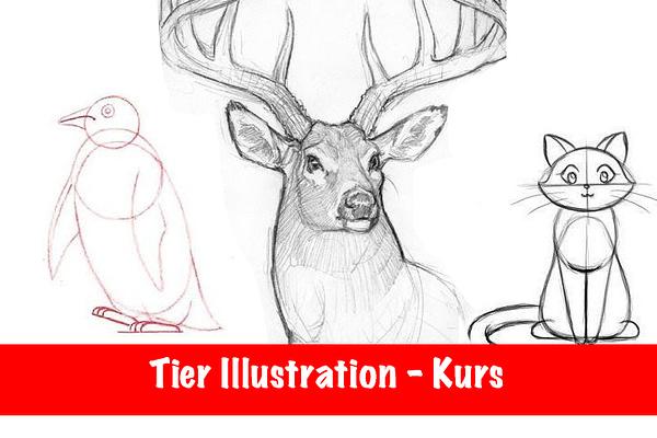 Illustratiom Kurs