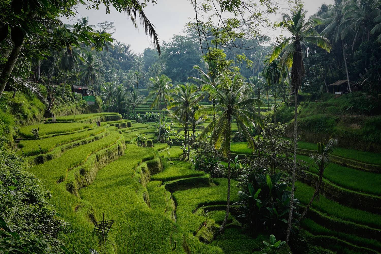 Indonesien Bali Badeferien